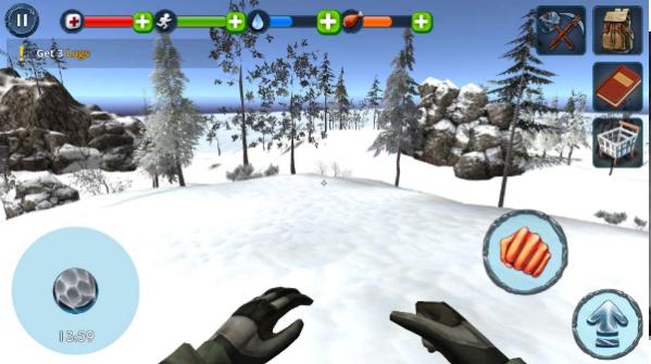 雪地生存游戏截图