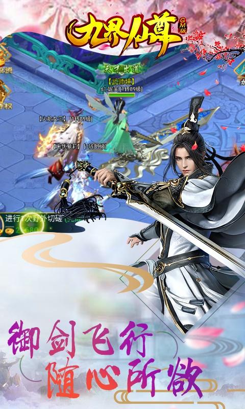 九界仙尊GM版游戏截图