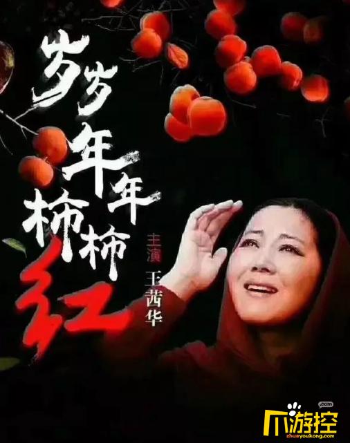 电视剧岁岁年年柿柿红故事介绍_岁岁年年柿柿红共几集几点更新