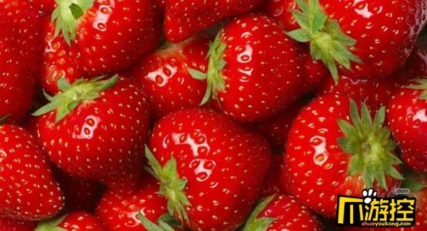 最脏蔬果竟然是草莓 12种最脏蔬果排名公布