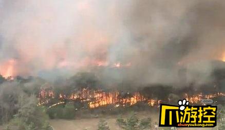 沈阳棋盘山突发火灾仍在扑救 已成功转移群众1.15万人