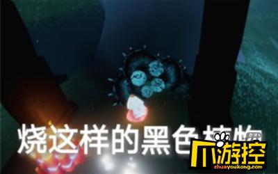 光遇8月4日蓝色光芒收集攻略3.png