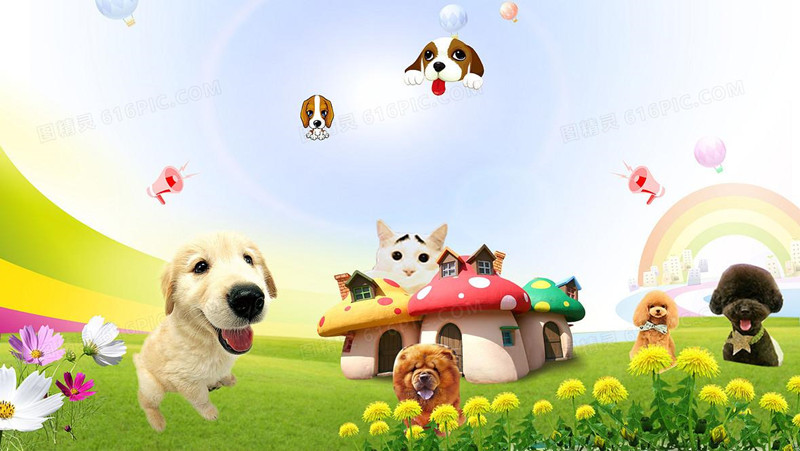 好玩的宠物升级进化的游戏大全
