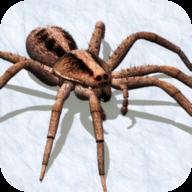 蜘蛛模拟器2018