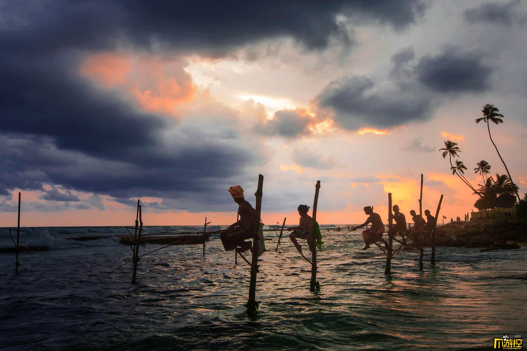 斯里兰卡总统发飙:本国航班的腰果十分难吃