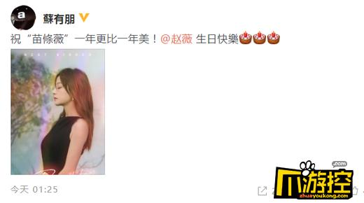苏有朋暖心为赵薇庆生 凌晨发文:一年更比一年美