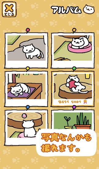 猫咪后院游戏截图3