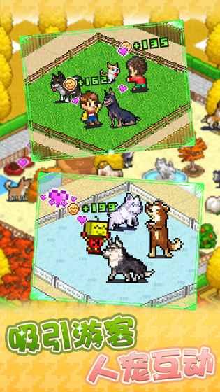 发现狗狗乐园