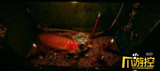 还愿游戏红龙鱼结局是什么
