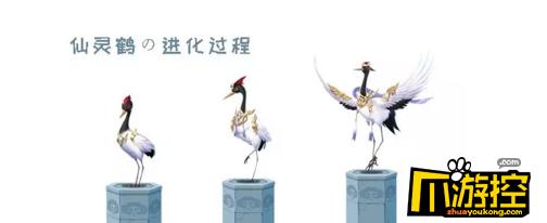 QQ飞车手游宠物仙灵鹤怎么获得,QQ飞车手游仙灵鹤获得方法介绍