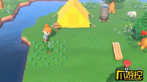 集合啦动物森友会露营地怎么刷小动物