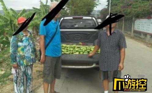 6名老人海南组团偷芒果 偷了220斤被拘留13日