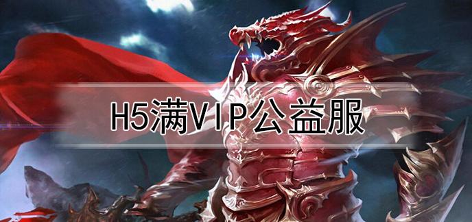 h5满VIP公益服