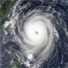 飓风大吃小安卓无敌版